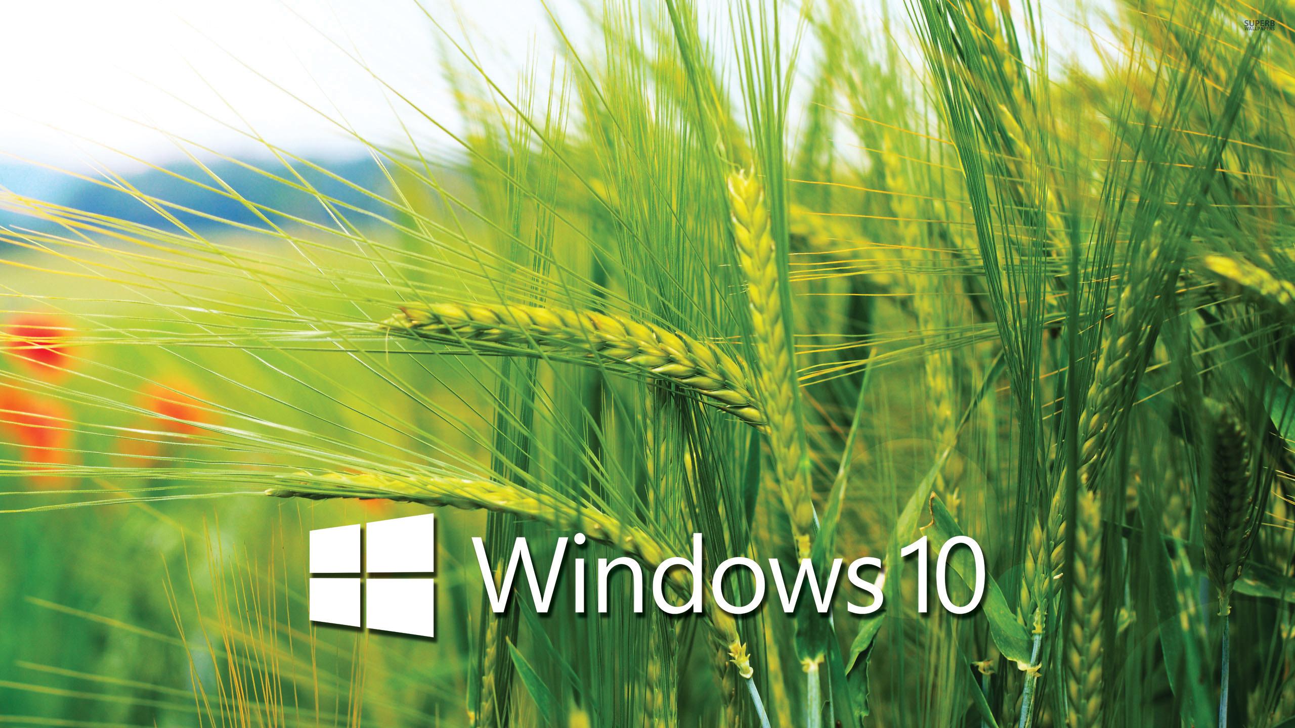 Windows-10-HD-Wallpaper-9