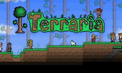Terraria Dev